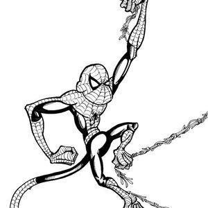 SpiderMonkey 1-10-14 - Denver - sample from the set - big room