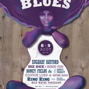 BAGNOLS BLUES FESTIVAL 2014