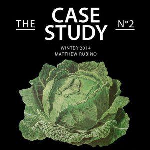 Winter 2014: The Case Study No. 2