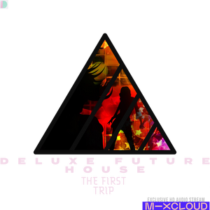 Deluxe Future House: The First Trip