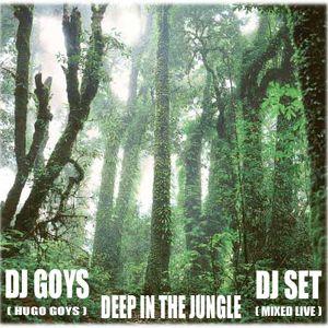 Dj Goys ( Hugo Goys ) - Deep In The Jungle - Dj Set - Mixed Live - 2011