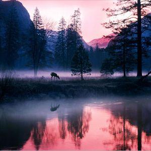 Hypnotic River
