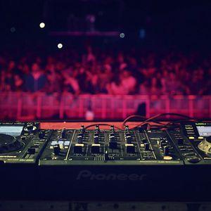 Ultra Music Festival Set-2014
