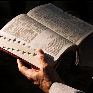 睚鲁的圣经世界 - 约翰2