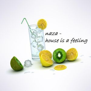 naza - house is a feeling