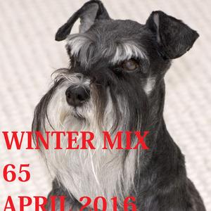 Winter Mix 65 - April 2016 (I Remember U)