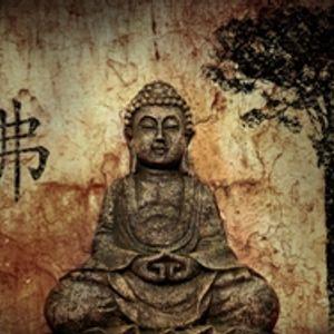 Karma Deep Vol 49