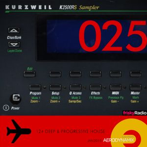 Aerodynamix 025 @ Frisky Radio Jan 2015 mixed by JuanP