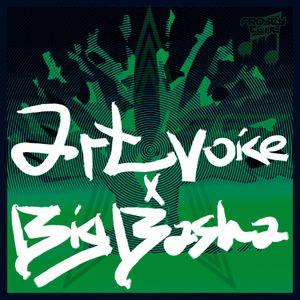 Artvoice x Big Basha