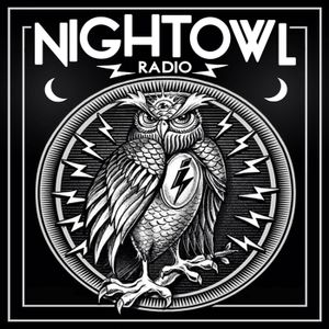 Night Owl Radio #065 – ft. Paul van Dyk Takeover
