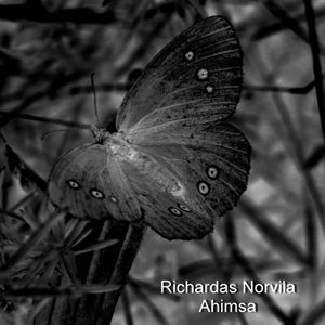 W&S P 002 - Richardas Norvila - Ahimsa - preview in the mix