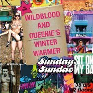Wildblood & Queenie's Winter Warmer Vol.3 The Soulful one