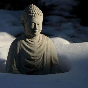 New Year Retreat - Guided Meditation