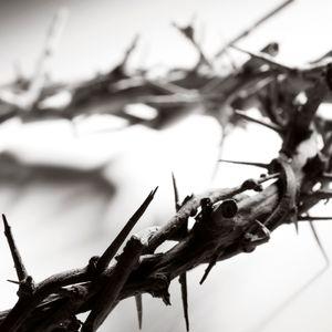 SERVANT SONGS: The Vulnerable Servant (Isaiah 50)