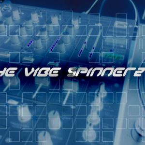 The Vibe Spinnerz Present's Blow it upppa.mp3