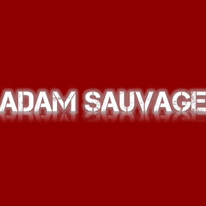 Adam Sauvage - Levels Mix
