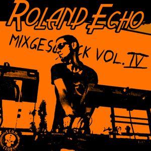 Roland Echo_mixgeschick vol. IV