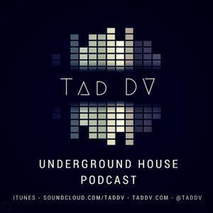 Underground House 002