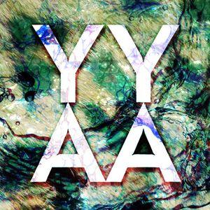 YYAA BCR 008