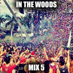 In The Woods Mix 5 (Progressive / Electro / Futur House Mix)