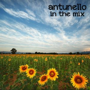 ANTUNELLO - In The Mix 002 Summer Rises