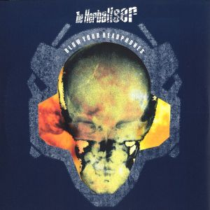 Herbaliser live - Total Eclipse Festival 1999 - Couleur 3