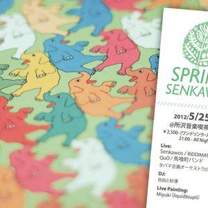 Spring Senkawos