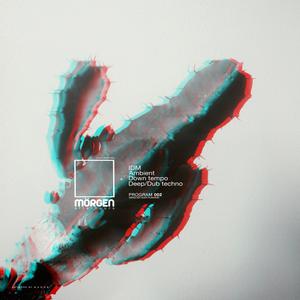 Morgen FM [Afterhours] PRO.002 IIIIIIII Mixed by Alex Humann