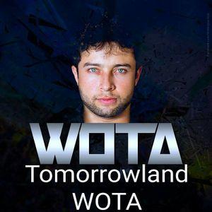 Tomorrowland Bélgica 2016 - WOTA