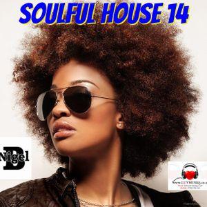 NIGEL B (SOULFUL HOUSE MIX 14)