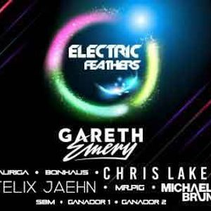 Electric Feathers Mr. Zound