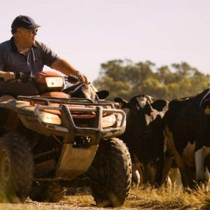 The trouble with quad bikes