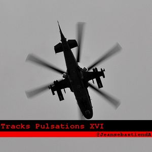 Tracks Pulsations XVI