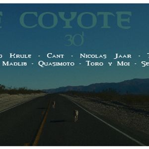 the coyote mix
