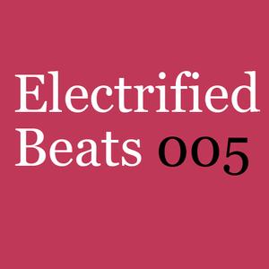 Electrified Beats 5 (2006)