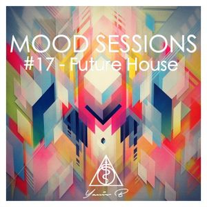 Mood sessions #17 - Future House