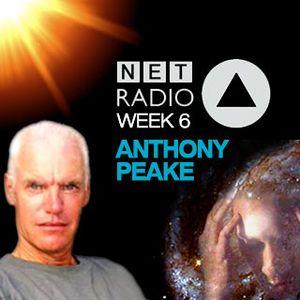Week 6 - Anthony Peake