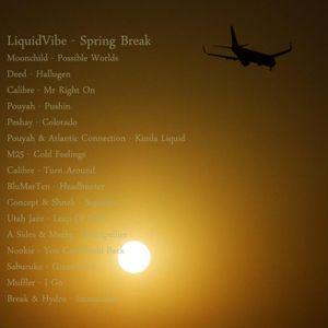 LiquidVibe - Spring Break