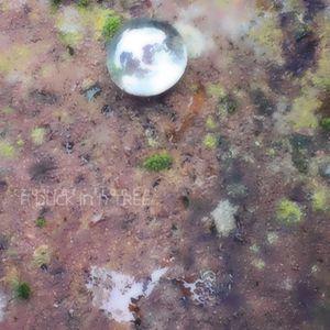 A Duck in a Tree 2020-01-11 | Machine Treasure
