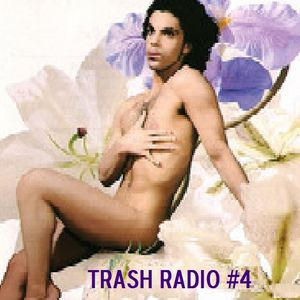 Bizarro Jerry's Trash Radio, Vol. 4