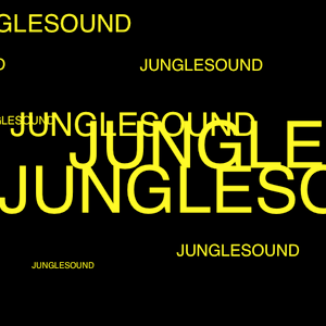 DJ JUNGLE PROMO SET