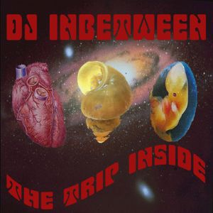 DJ Inbetween - The Trip Inside