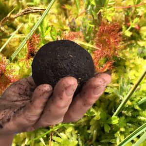 Soil Series [vol xi] - 24 dorodango + Jacqueline Heerema.