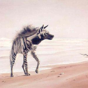 Hyena Demo