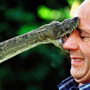 Snakes #01 - 24/9/11 - on RadioBasePopolare