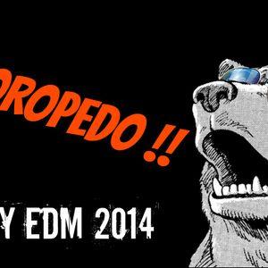 January EDM 2014