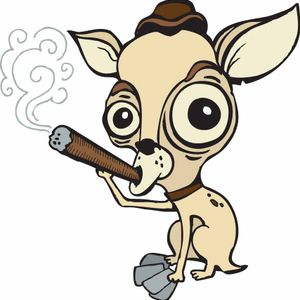 Chihuahuas Support Your Right to Excrete from Your Nipples!