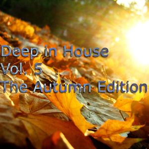Deep in House Vol. 5 (October 2014)