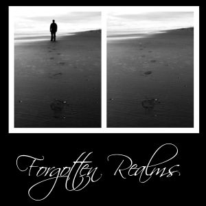 Forgotten Realms (The Lost and Found Emotions)