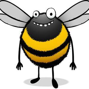 SonntagsKind - Machts Sum Sum fliegt ne Biene rum